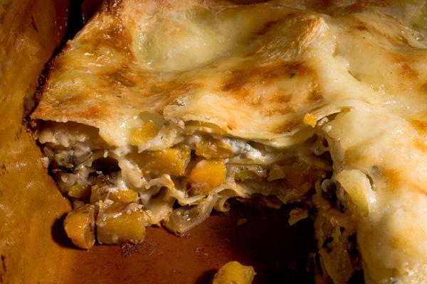squash lasagna recipe butternut squash mushrooms garlic bechemel sauce ...