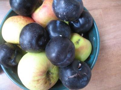 plum applesauce | Eat ALLLLLL the FOODS! | Pinterest
