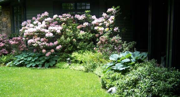 Landscaping Ideas For Shady Side Of House : Shady side of house landscape for the home