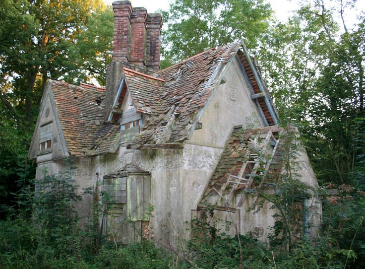 The old house in the woods abandoned pinterest - The house in the woods ...