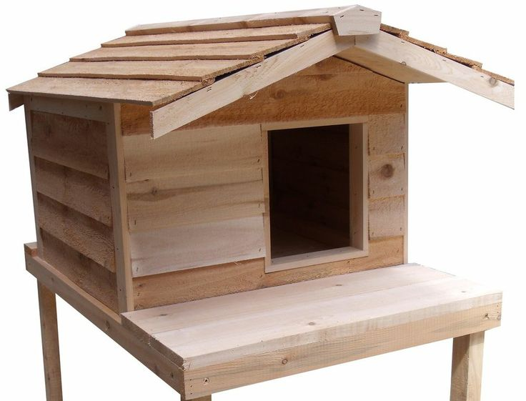 LARGE INSULATED CEDAR OUTDOOR CAT HOUSE WITH PLATFORM - I want to ...