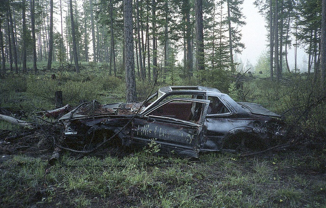 Abandoned in a forest.