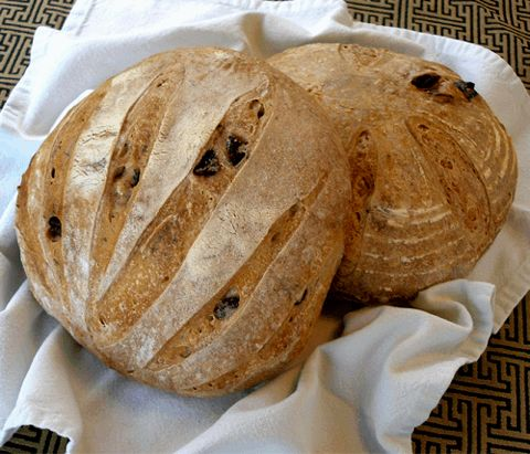 Kalamata Olive and Rosemary Boule | The Bread of Life | Pinterest