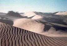 Oregon Dunes National Recreation Area 2010