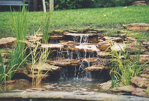 Pinterest discover and save creative ideas for Diy ponds water features