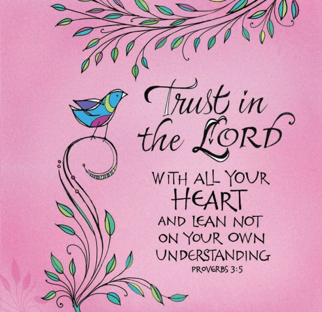 Proverbs 3:5   Trust in the Lord with all your heart and lean not on you own understanding.