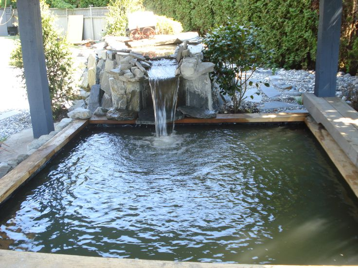 Pin by lonnie padilla on reuse recycle repurpose pinterest for Koi pond tubs