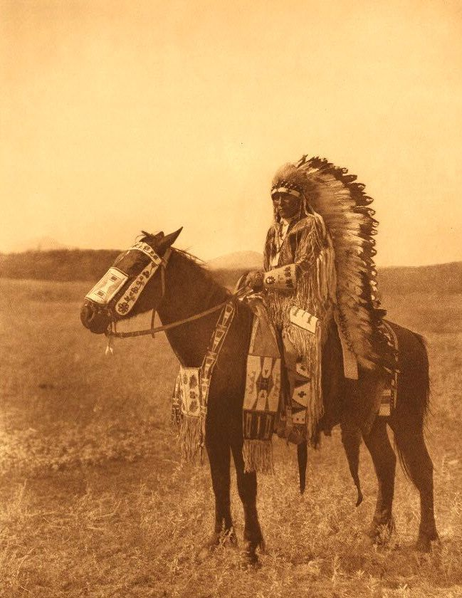 chief hector assiniboin tribe native american indians