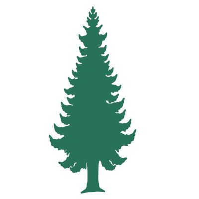 Pine Tree Wall Stencil For Painting Kids Or Baby Room