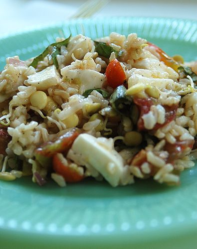Rice salad with tomatoes, mozzarella, and sprouted lentils