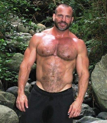 daddy big bear Gribskov