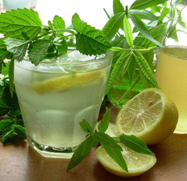 Old Fashioned Lemon Balm and Lemon Verbena Lemonade Syrup | Recipe