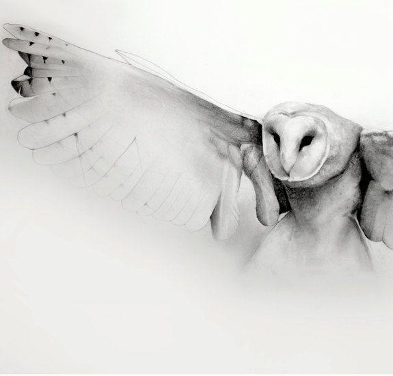 Flying barn owl pencil drawing art print