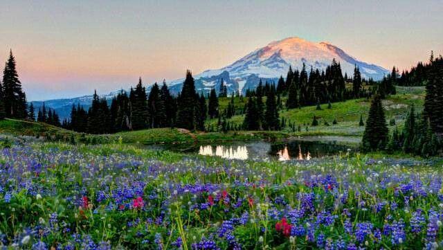 Photo by: Tom Gulaba | Scenery - Washington State | Pinterest