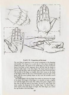 teoría sobre como dibujar las manos