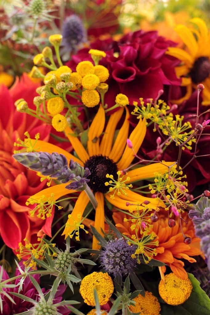 October Flowers Autumn In Zen Lifestyle Pinterest