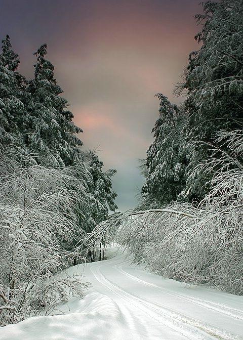 road path tracks snow - photo #36