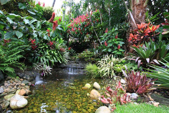 Stream tropical ponds pinterest for Tropical garden designs