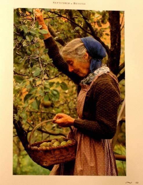 Tasha Tudor - harvesting