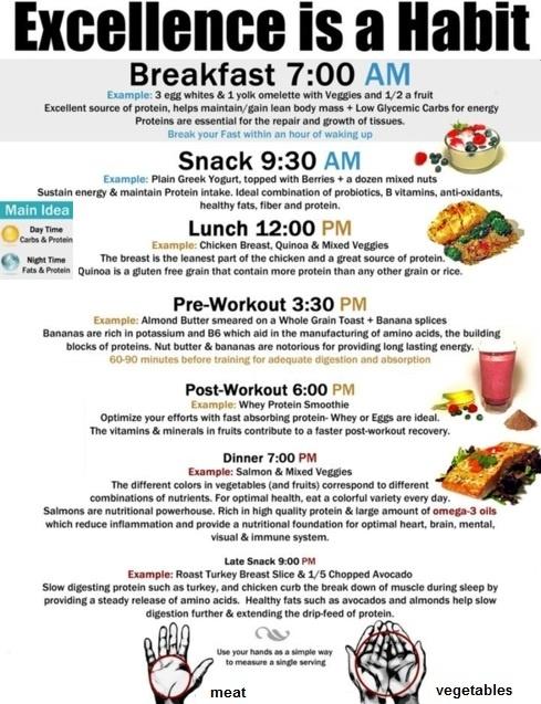 fitness carli meal plan pdf