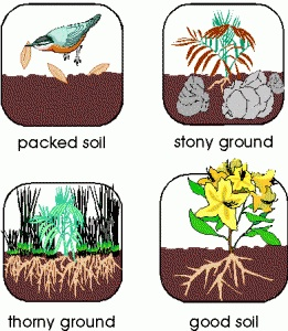 Four types of soil dirt pinterest for 4 different types of soil
