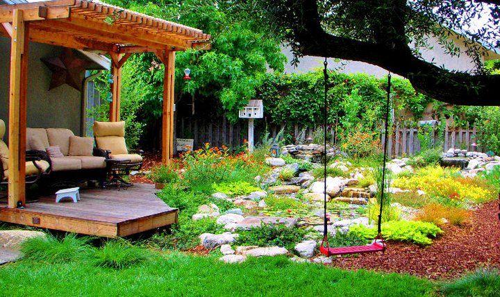 drought tolerant garden ideas drought pinterest
