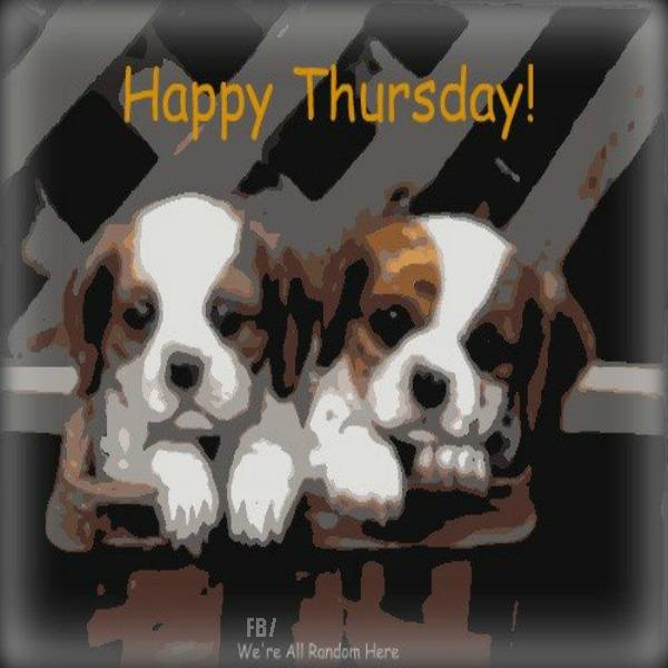 Image result for thursday gif images