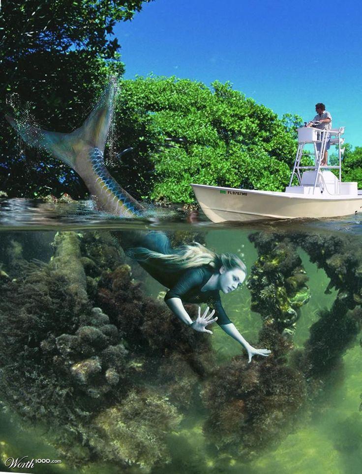 Mermaid Kate!!! | Kate...