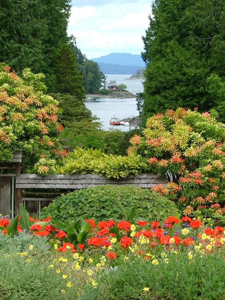 pin by michelle herbert on gardens i love