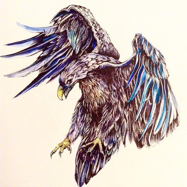 Акварель птица рисунок