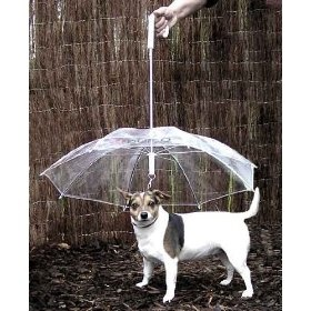 If you're tired of walking your dog in the rain and returning home with your dog dripping wet, then you need a Dog Umbrella. The Dog Umbrella is a see through umbrella that also works as a leash, keeping your dog in your control and out of the rain.