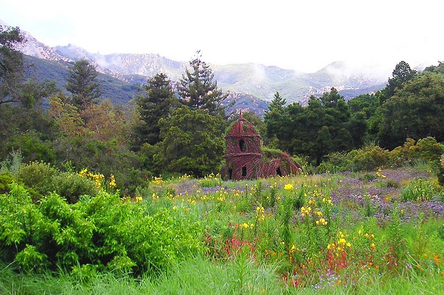 Santa Barbara Botanical Gardens Places I Have Been Pinterest