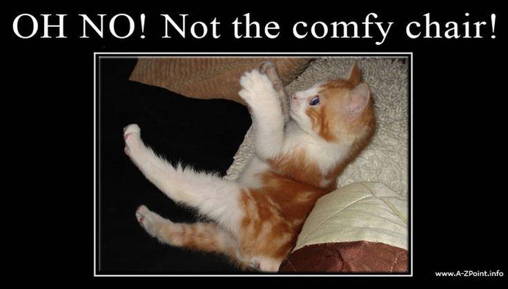 Comfy Chair Monty Python