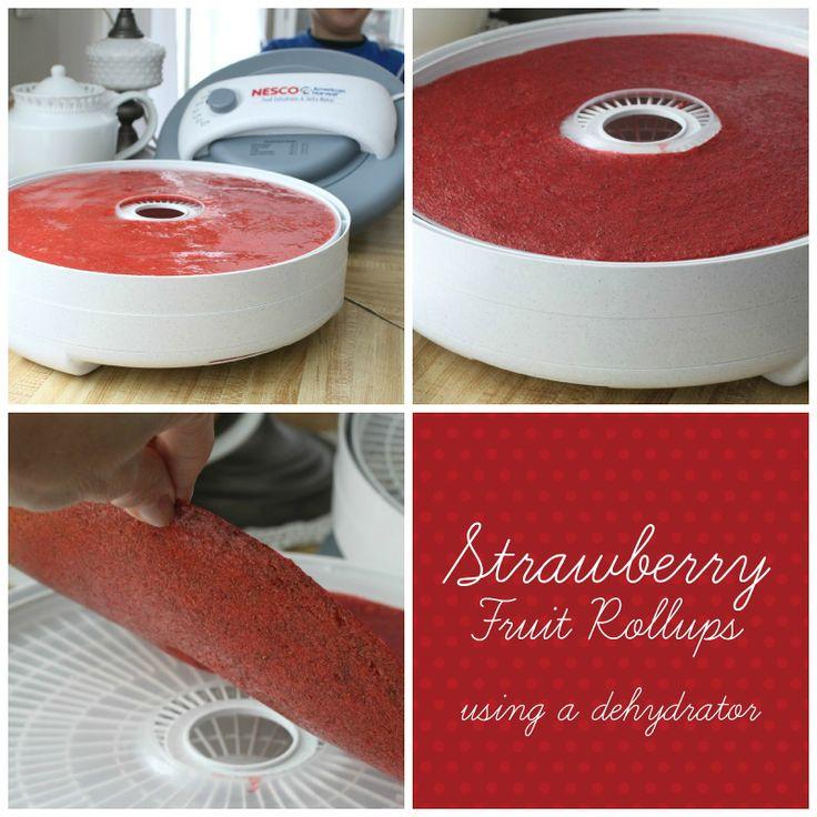 Strawberry Fruit Roll-Ups   Appetizers!   Pinterest