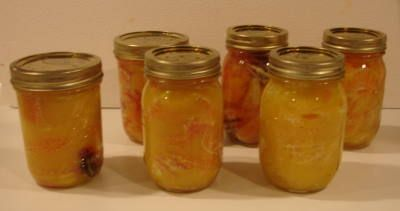 Preserving Citrus Fruit!