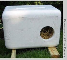 styrofoam cat shelter