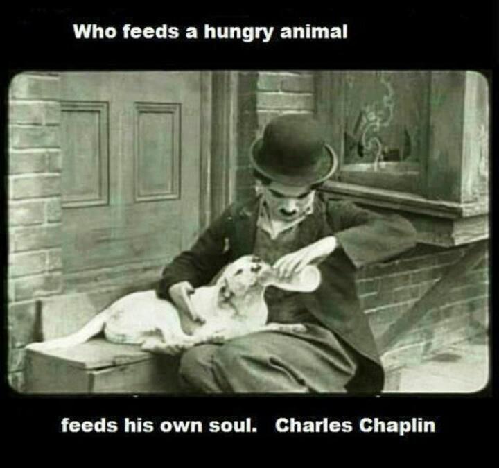 Love Charlie Chaplin | Inspiring Art | Pinterest