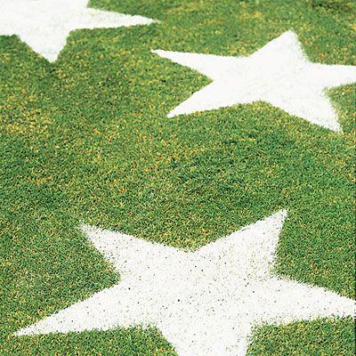 Lawn Stars (it's flour)