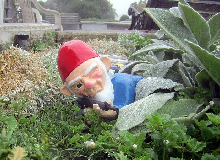Combat Garden Gnomes Photograph Combat Garden Gnome Defen