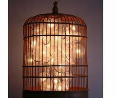 vintage birdcage turned light.