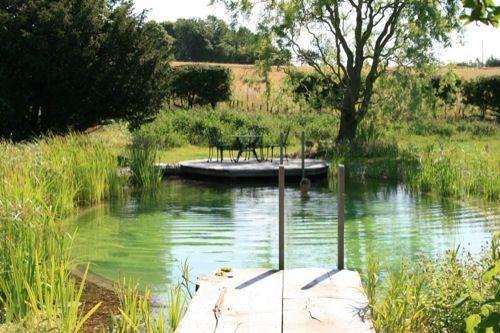 Pin by va portik on water garden pinterest for Convert pool into garden
