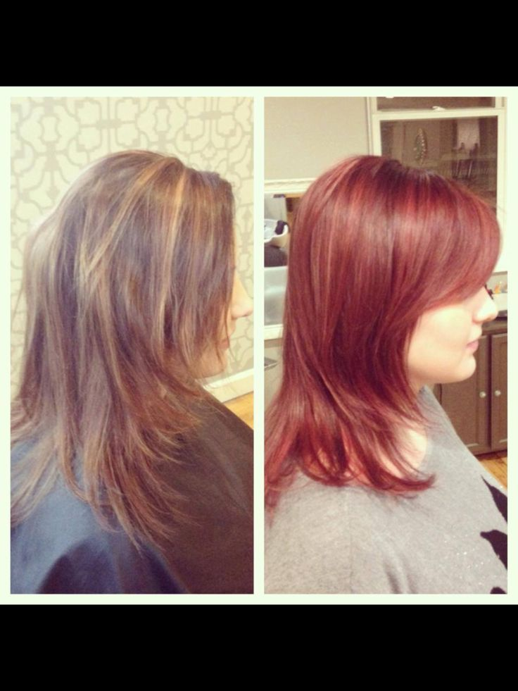 Sangria Hair Color Short Hairstyle 2013