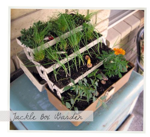 Too cute! I think I might get in trouble if I emptied my husband's tackle box to try this!  http://www.moredesignplease.com/moredesignplease/2010/4/9/diy-tackle-box-garden.html