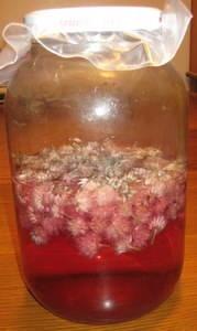 Chive Blossom Vinegar | Herbal Things | Pinterest
