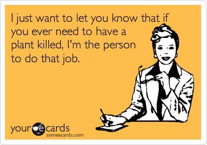 I have even killed an aloe vera. True story.