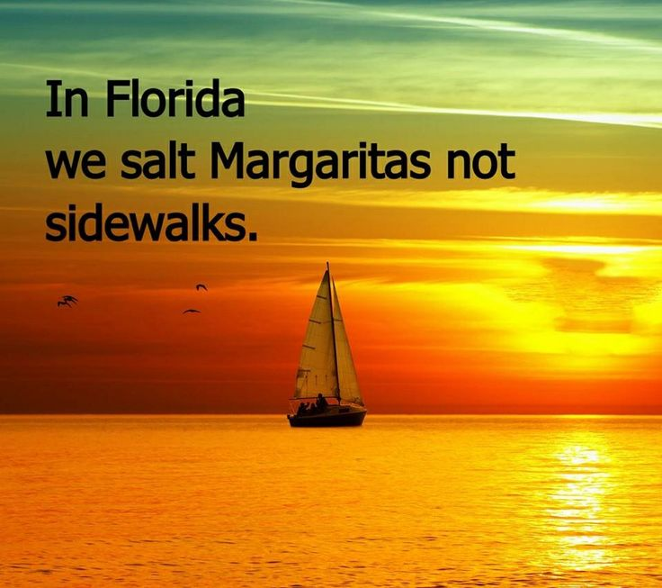 Move To Florida Quotes Funny Sayings Pinterest