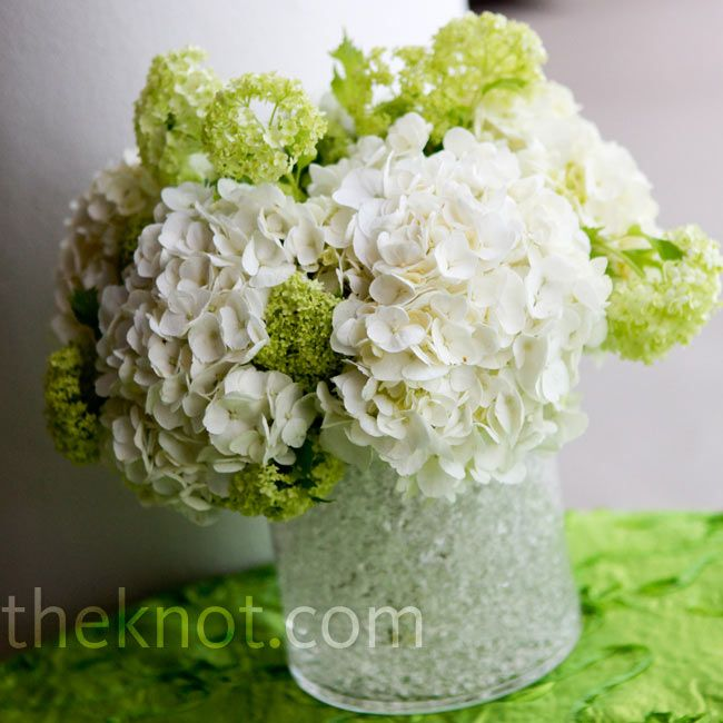 White Hydrangea Wedding Centerpieces : White and green centerpieces this would look great with plum angela