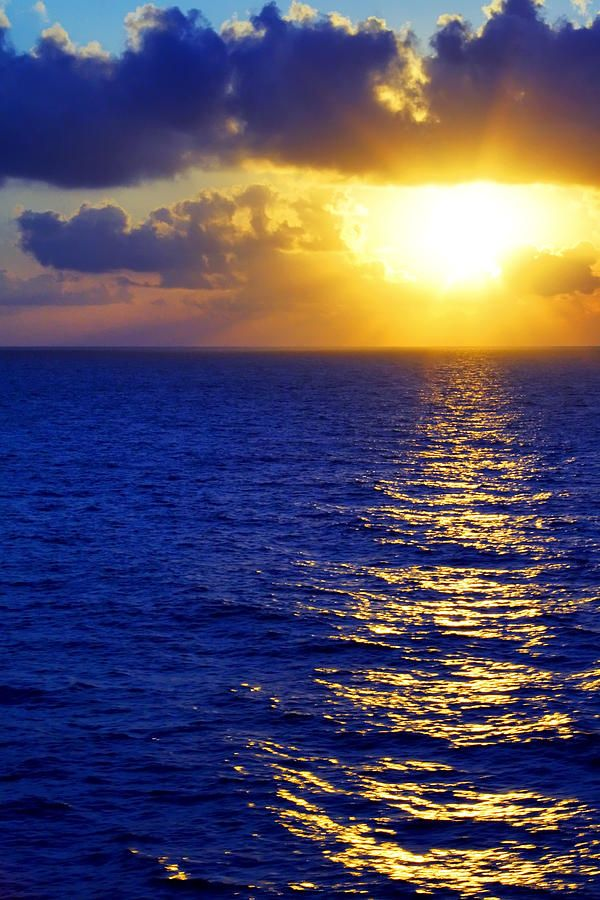 Sunrise at Sea  ART  Pinterest
