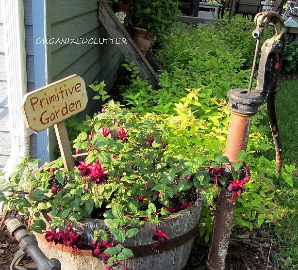 Garden Junk Fuchsias