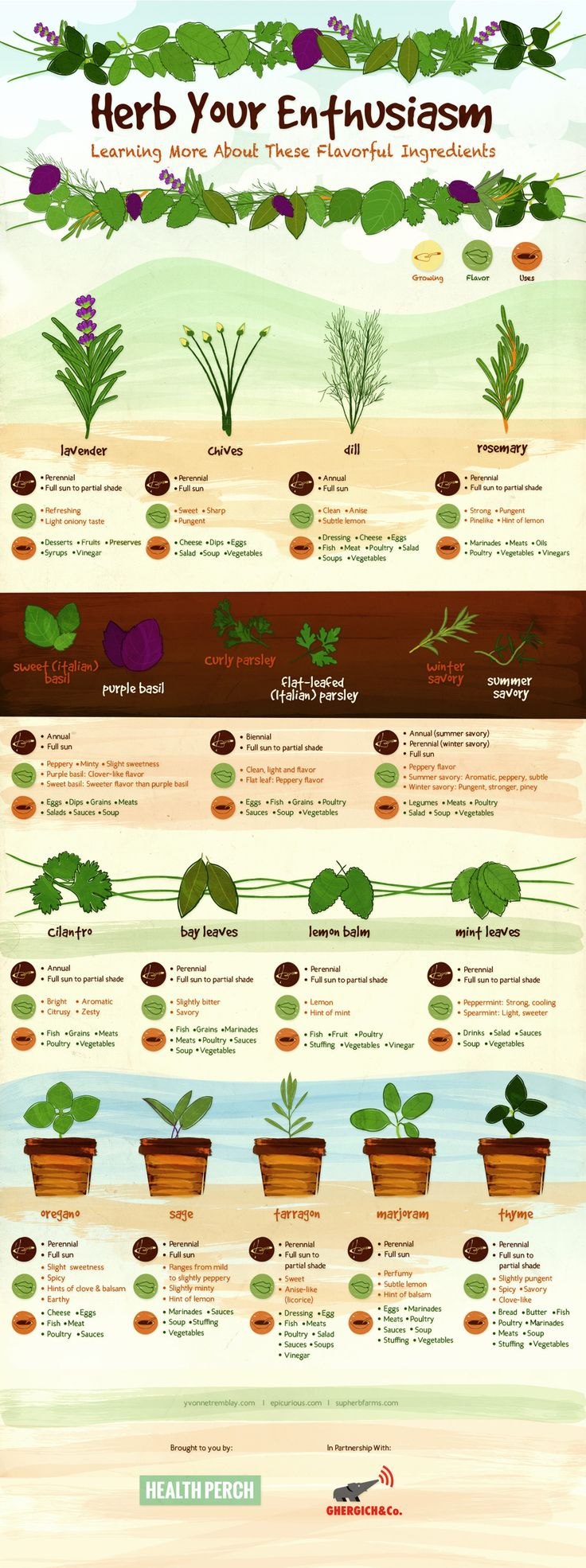 Herb Your Enthusiasm - Growing herbs indoors is an easy way to bring the feeling of spring into your home throughout the year. Here are some tips that can help you enjoy the many delicious benefits of fresh herbs. This chart is great to have on hand as a resource for not only growing herbs, but the flavors each adds to a dish, and even suggestions for yummy pairings.
